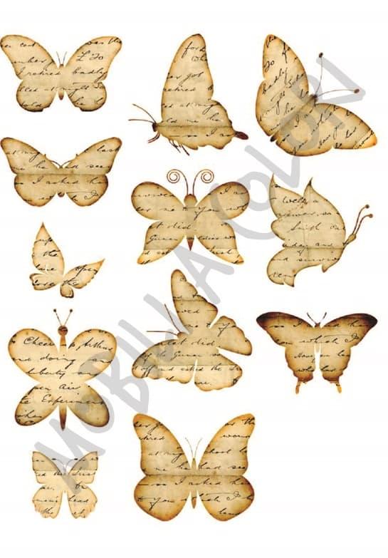 Farfalle trasferimento immagine mobili per passione for Immagini farfalle per desktop