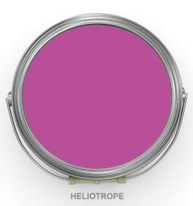 fucsia fuxia heliotrope